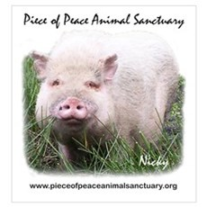 Piece of Peace Poster