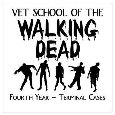 Fourth Year Vet School Zombies Framed Print