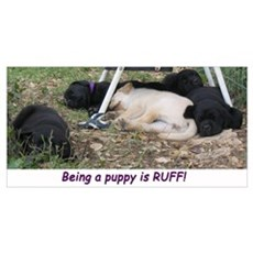 Being a Puppy is RUFF Poster