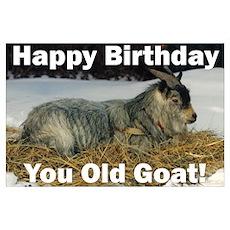Old Goat Birthday Poster
