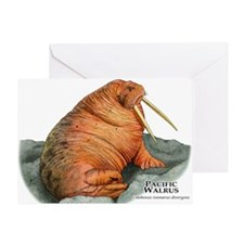 Pacific Walrus Greeting Card