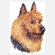 Australian Terrier Dog Portrait