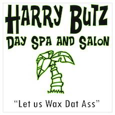Harry Butz day spa & salon Poster