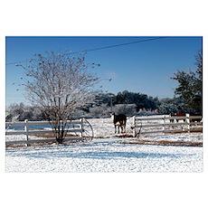 Snow at the Ranch Poster