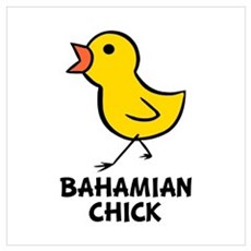 Bahmaian Chick Poster