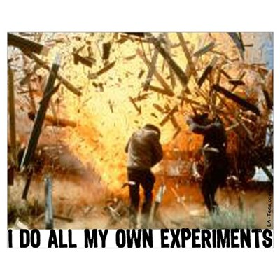 I DO ALL MY OWN EXPERIMENTS 2 Poster
