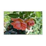 Beautiful Moments Roses 22x14 Wall Peel