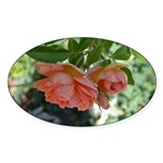 Beautiful Moments Roses Sticker (Oval)