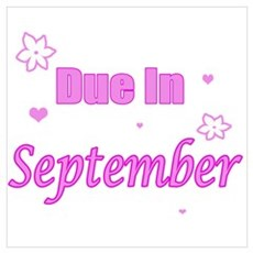 Due In September Pink Poster