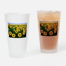 Sunflowers in field Drinking Glass