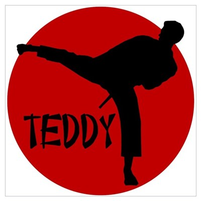 Teddy Karate Poster