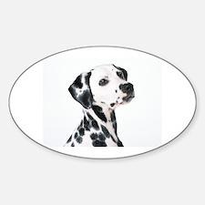 Dalmatian Decal