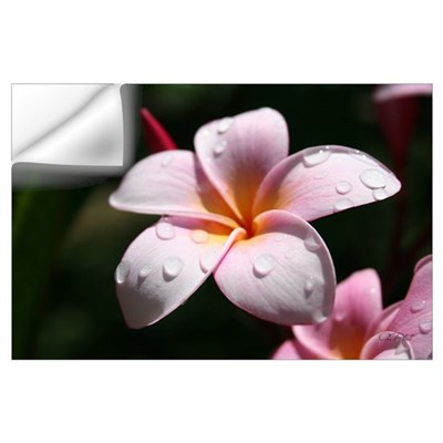 Pink Plumeria Wall Decal