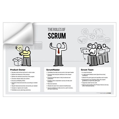 The Roles of Scrum (Male ScrumMaster) Wall Decal