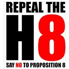 Repeal the H8 Canvas Art