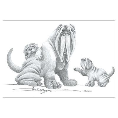 Neapolitan Mastiff Puppies Poster