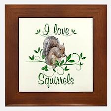 I Love Squirrels Framed Tile
