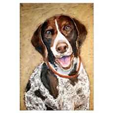 German Shorthaired Pointer Framed Print