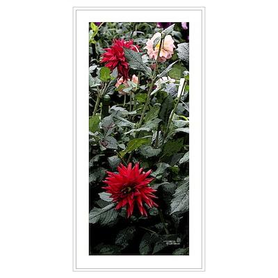 """My Secret Garden"" Poster"