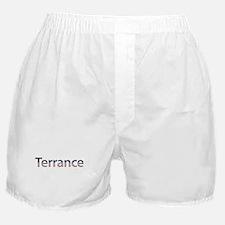Terrance Stars and Stripes Boxer Shorts