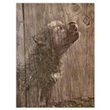 Wolf pup Wrapped Canvas Art