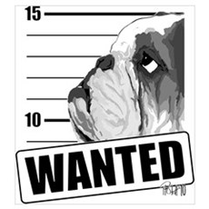 Black Bulldog Wanted Poster