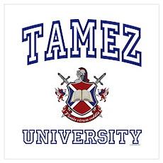 TAMEZ University Poster