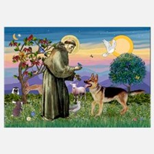 St Francis / G Shep