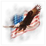 Bald eagle Posters