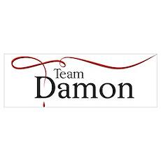Vampire Diaries Team Damon Poster