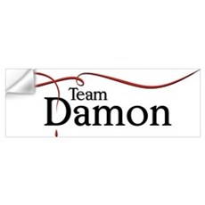Vampire Diaries Team Damon Wall Decal