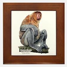 Proboscis Monkey Framed Tile