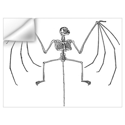 Bat Skeleton Wall Decal
