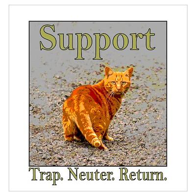 Support Trap Neuter Return Poster