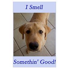 I Smell Somethin' Good Poster