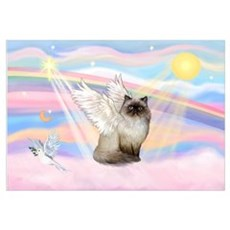 Clouds / Himalayan Cat Canvas Art