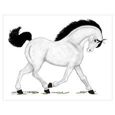 Gray Horse Black Mane Poster