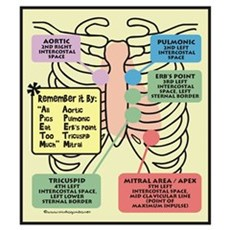 Remember Cardiac Landmarks Poster