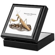 Praying Mantis Keepsake Box