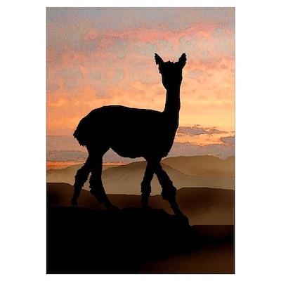 Alpaca Sunset Poster