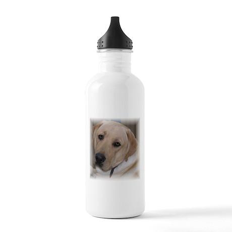 Male Labrador Retriver Stainless Water Bottle 1.0L