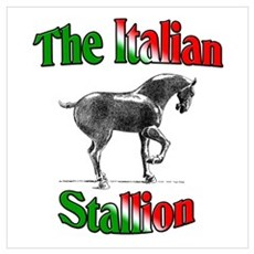 The Italian Stallion Canvas Art