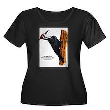 Pileated Woodpecker T