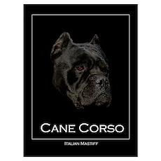 Handsome Black Cane Corso Poster