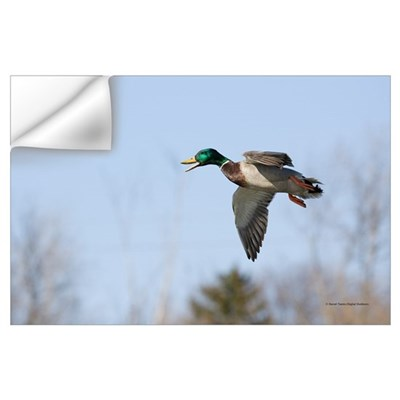 Duck Dropping In Wall Decal