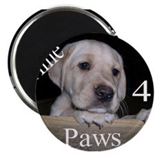 """Time for Paws 2.25"""" Magnet (100 pack)"""
