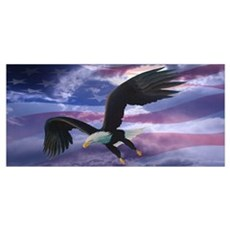Freedom Eagle Framed Print