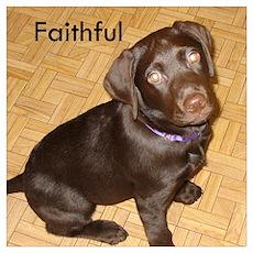 Faithful Poster