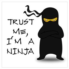 Trust Me, I'm A Ninja Poster