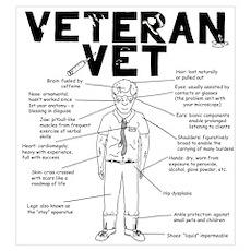 Veteran Vet Male Poster
